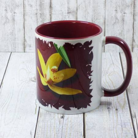 Cymbidium Kaffeebecher
